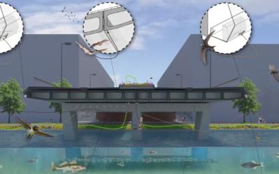 Natuurinclusief bouwen Amstelstroombrug Amsterdam